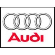 Audi Çıkma Parça