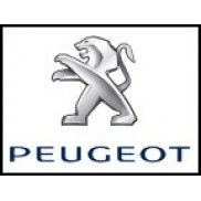 Peugeot Çıkma Parça